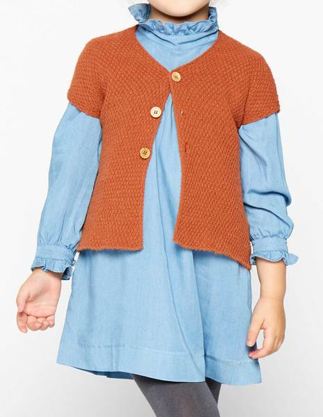 Rust short sleeve cardigan